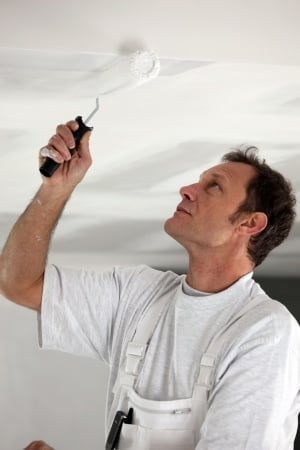 Paint Expert Witness