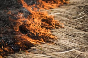 Negligence by Road Crew Allegedly Causes Wildfire